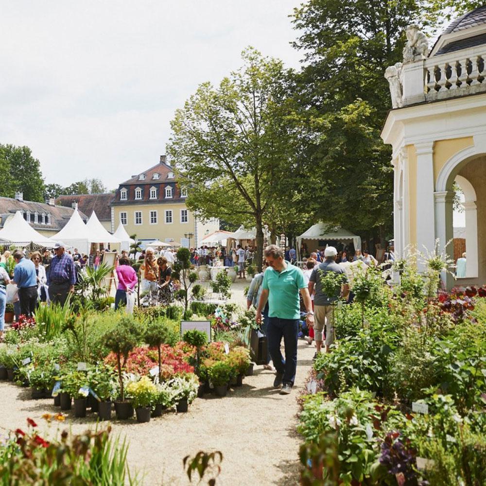 sonnenanker-Gartenfest-Hanau-1